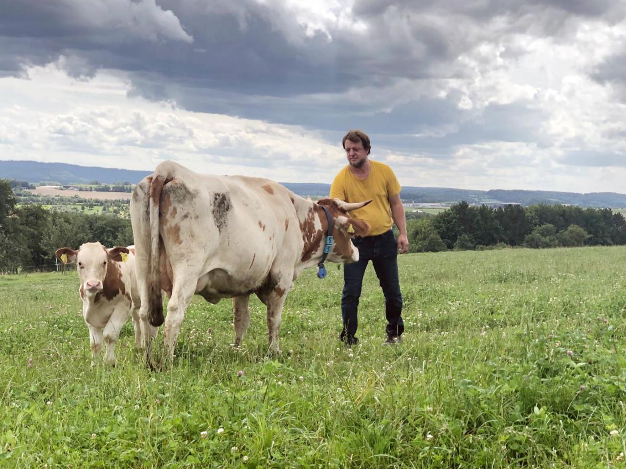 Auf einer Weide beim Rimmlingshof: Demeter-Landwirt Rainer Kubach mit Kuh und Kalb.