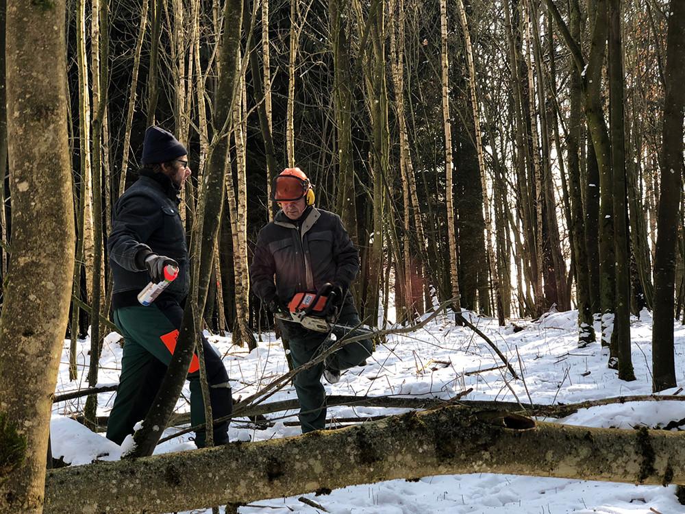 Ein Bauernjahr (2): Beim Holzschlagen