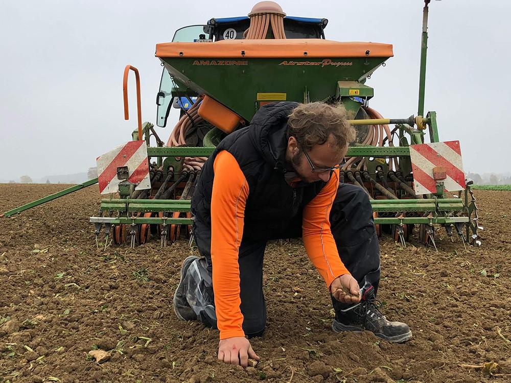Ein Bauernjahr (10):  Letzte Arbeiten auf dem Feld